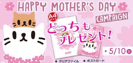 母の日キャンペーン開催!